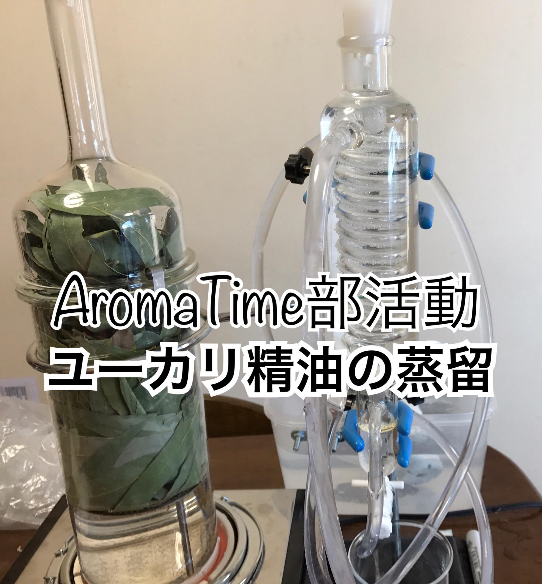 ユーカリ精油の蒸留